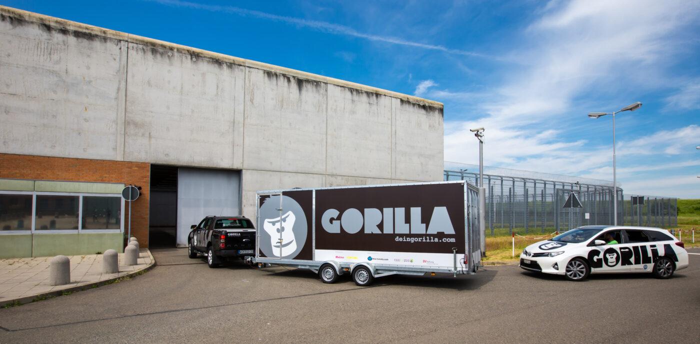 GORILLA Fahrzeuge die ins Jugendgefaengnis JSA Regis Briefingen einfahren.
